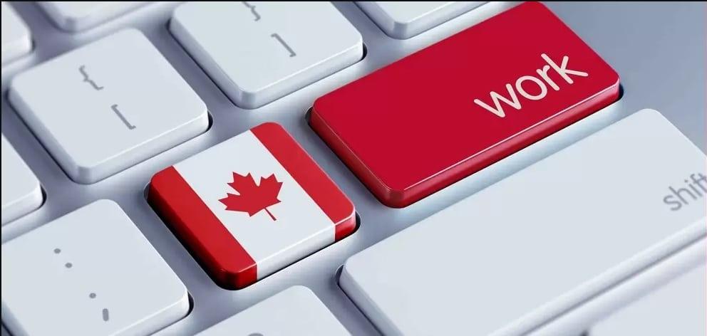 الإجراءات المطلوبة للحصول على تصريح عمل في كندا