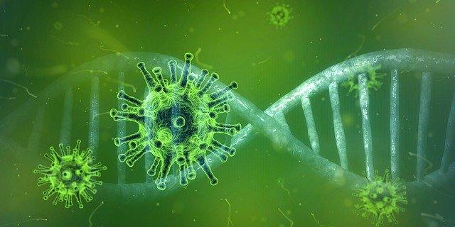 دلائل ارسال فيروسات من كندا إلى ووهان في الصين