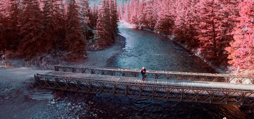 5 أشياء يجب عليك فعلها في كندا