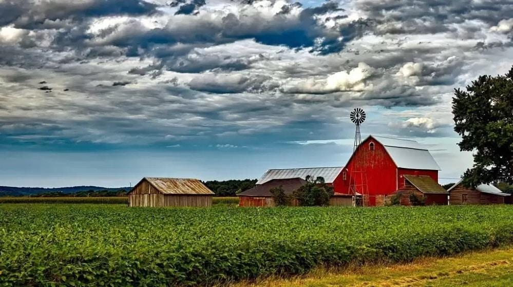 طريقة إمتلاك و شراء مزرعة في كندا