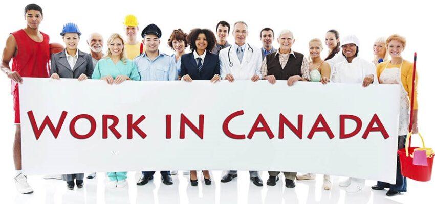 أهم نصائح العمل فى كندا للخريجين الجدد