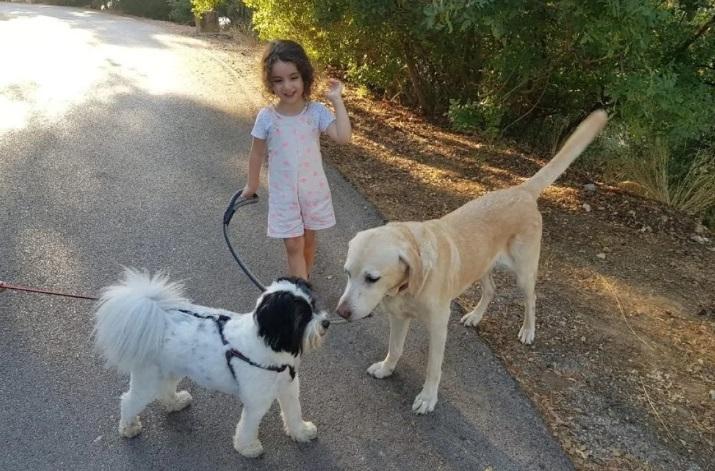 وفاة فتاة كندية تبلغ 3 سنوات فى إنفجار بيروت تأمل عائلتها بالعدالة وتغيير لبنان إلى الأفضل