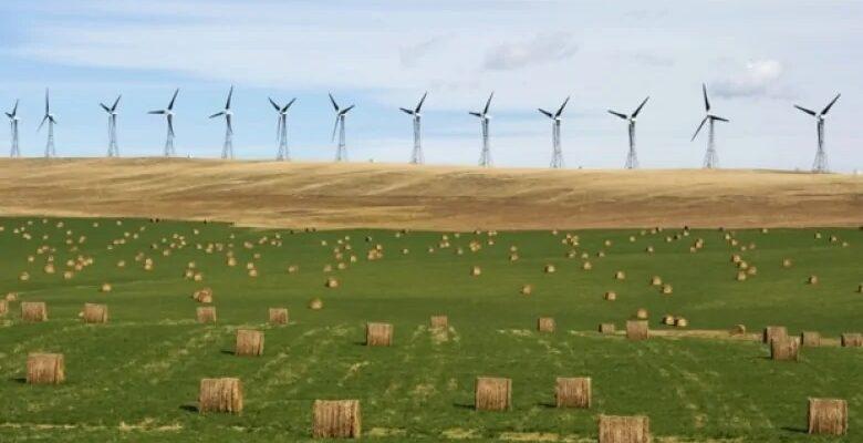 ألبرتا يمكن أن تقود كندا فى مجال طاقة الرياح والطاقة الشمسية بحلول عام 2025