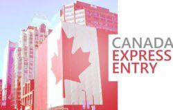 الدخول السريع فى كندا يصدر 4200 دعوة تقدم للحصول على الإقامة الدائمة