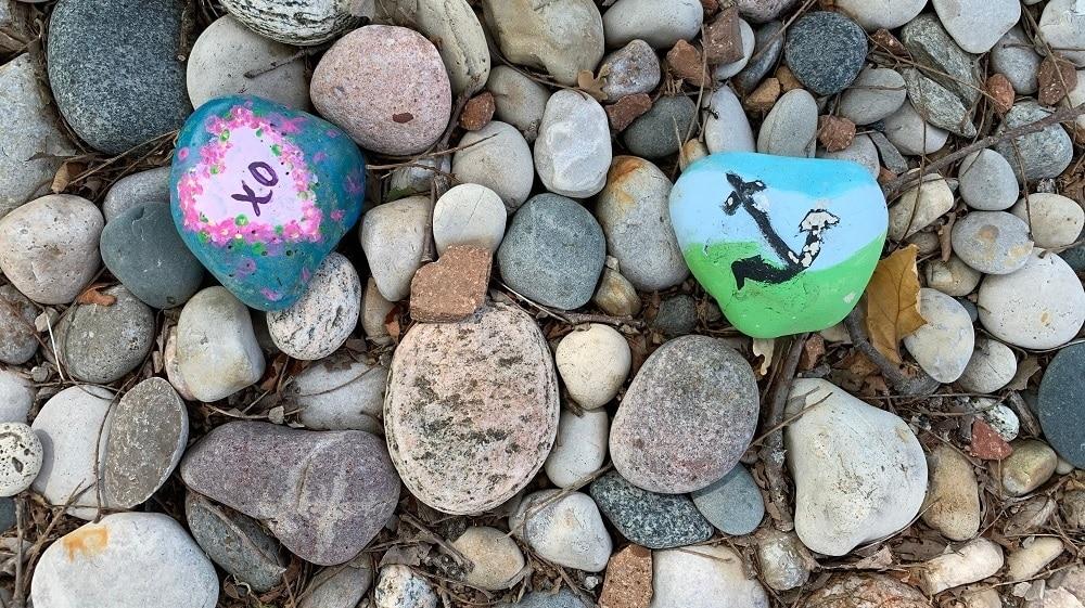 تحذر الوكالة من ترك الصخور الملونة فى حدائق مقاطعة أونتاريو