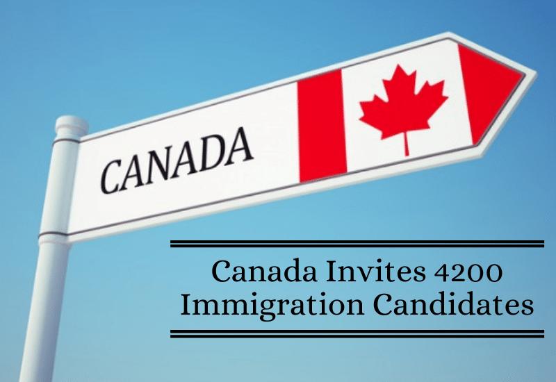 نظام الدخول السريع فى كندا يدعو 4200 مرشح اليوم للمرة الثالثة