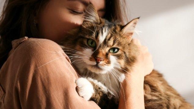 على الأسر التى يتم عزلها بسبب كوفيد-19 عزل الحيوانات الأليفة الخاصة بهم