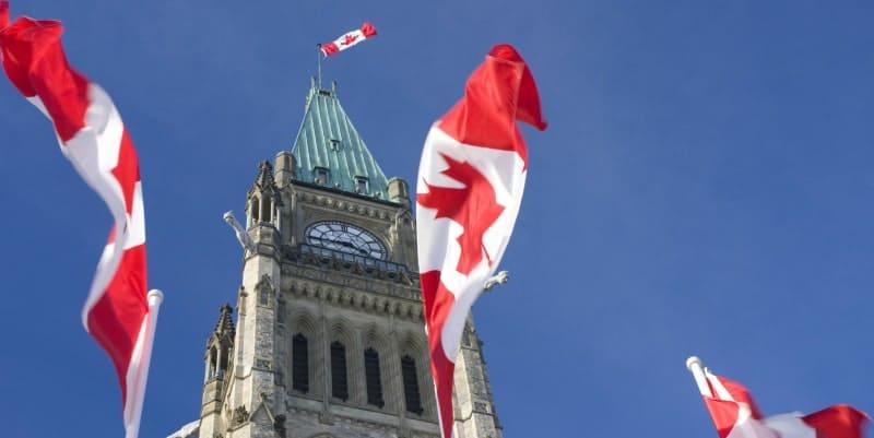 زاد الاهتمام بالهجرة الكندية بين أبريل وأغسطس 2020