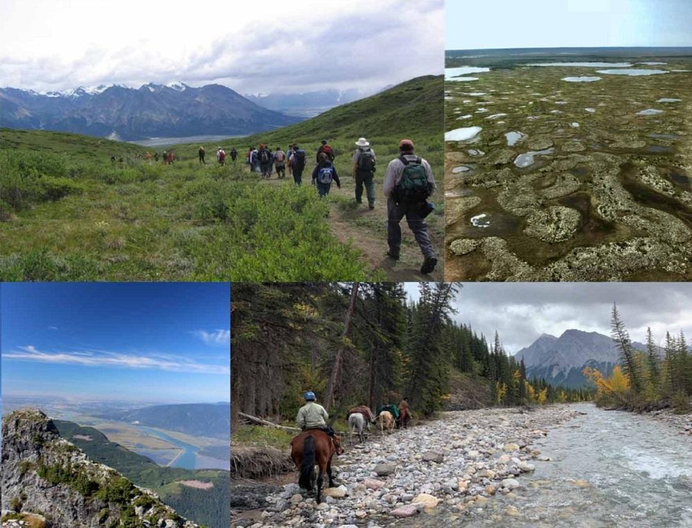 دراسة  المناطق المحمية فى كندا ليست بالضرورة الأماكن التى تشتد الحاجة إليها