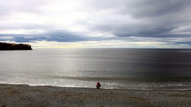 وصلت المياه العميقة فى خليج سانت لورانس إلى درجات حرارة قياسية عالية