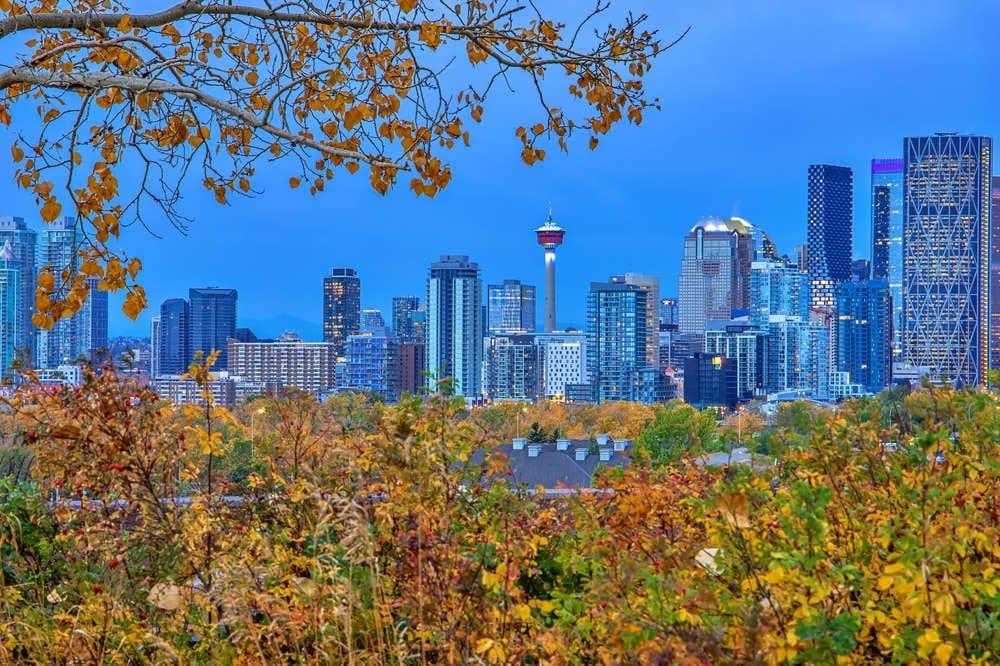 أداة جديدة تساعد المهاجرين على تحديد مكان العيش فى كندا