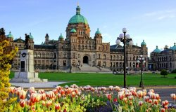 تدعو كولومبيا البريطانية 95 فى سحب Tech Pilot لتوسيع نطاق برنامج هجرة رجال الأعمال