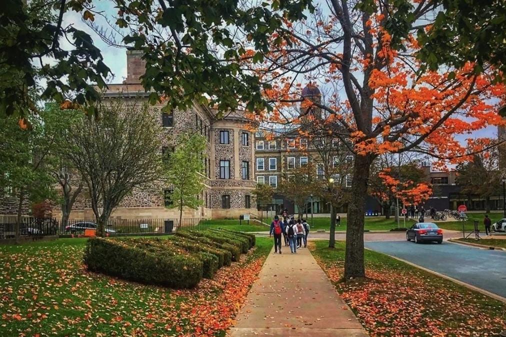 ستعود الجامعات الكندية إلى الفصول الدراسية الشخصية هذا الخريف